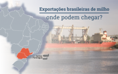 Exportações brasileiras de milho ainda podem atingir recorde