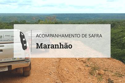 Com seca e temperatura elevada, Maranhão deve colher menos soja
