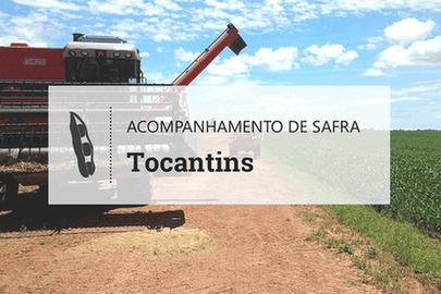 Investimento vai na contramão da produtividade em Tocantins