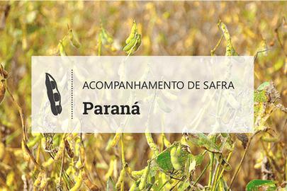 No Paraná, desafio do produtor é compensar custos mais altos com produtividade