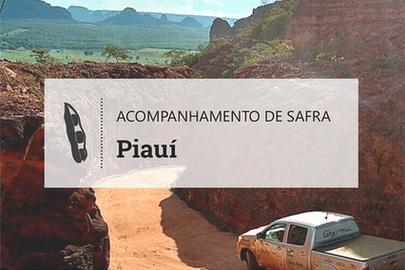 Clima heterogêneo bagunça safra de grãos no Piauí