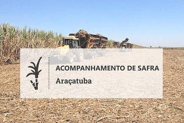 Clima seco favorece moagem de cana em Araçatuba