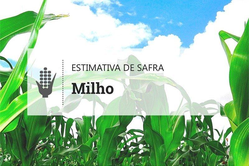 Novo recuo na produção brasileira de milho reforça quebra