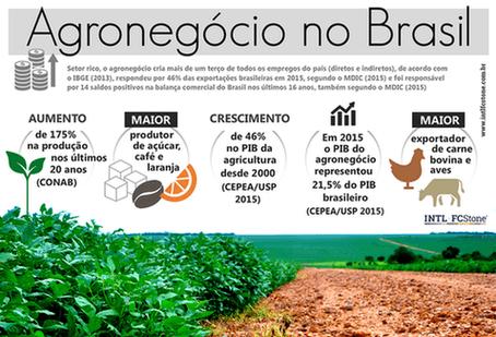 Agronegócio no Brasil - v2
