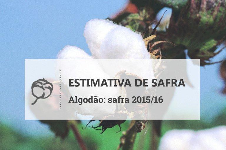 Clima deve reduzir produção de algodão no Brasil para 1,25 mi ton, diz INTL FCStone