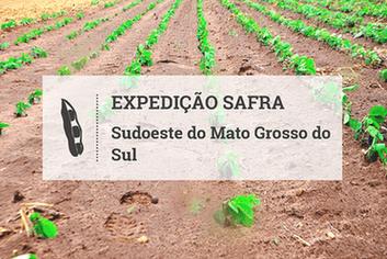 Plantio de soja: custo de produção sobe no Sudoeste do Mato Grosso do Sul