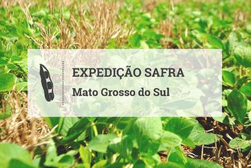 Mato Grosso do Sul: clima e custos estão no radar da safra 2016/17
