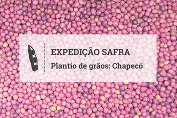 Oeste Catarinense encontra condições favoráveis ao plantio da soja