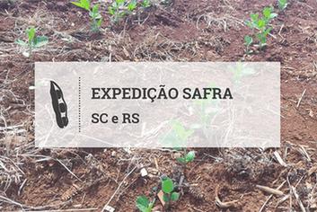 Excesso de umidade altera calendário do plantio da soja em SC e RS