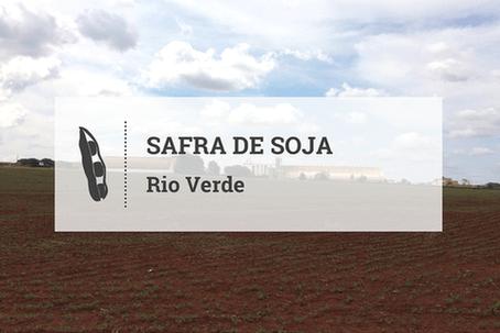 Sem adiantamento mas, com clima favorável, plantio avança em Rio Verde