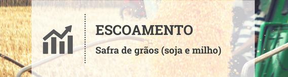 Escoamento da safra de grãos encarece no Brasil