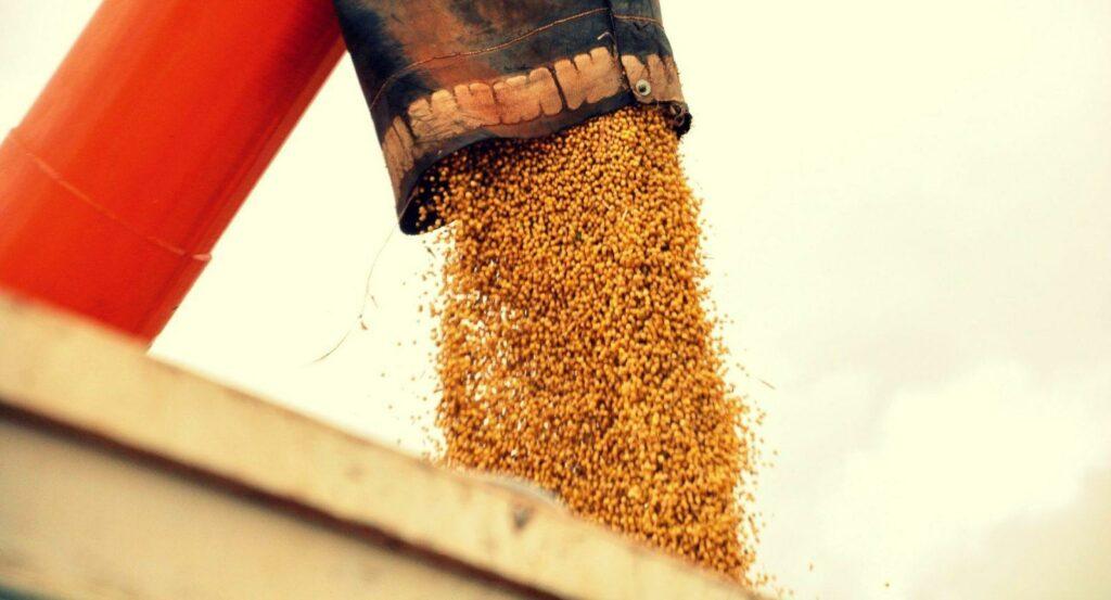 Fim da Lei Kandir deve prejudicar exportações brasileiras de soja