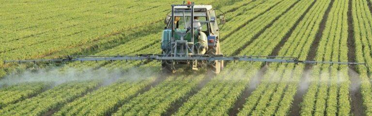 Entregas de fertilizantes para a soja seguem firmes em novembro