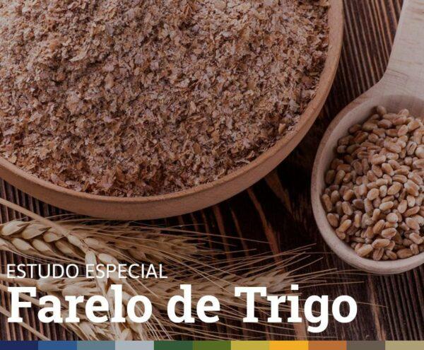 ESTUDO ESPECIAL • FARELO DE TRIGO
