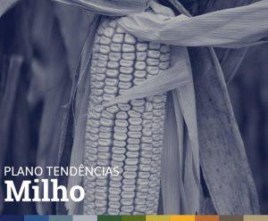 PLANO TENDÊNCIAS • MILHO
