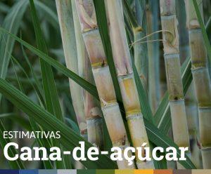 ESTIMATIVAS DE SAFRA • CANA-DE-AÇÚCAR