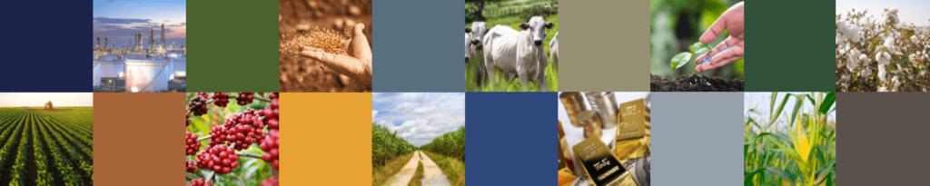 INTL FCStone promove encontro sobre Mercados de Commodities