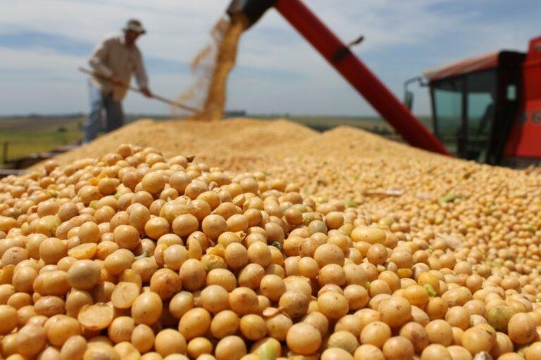 Exportações brasileiras de soja em abril ultrapassam 10 milhões de toneladas